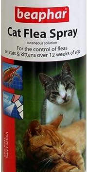 Beaphar Cat Flea Spray 150ml Pump Spray Amazon Co Uk Pet Supplies