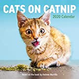 Cats on Catnip Wall Calendar 2020