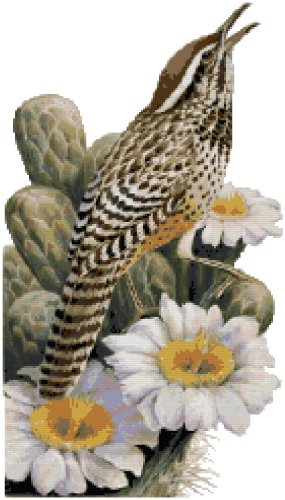 Arizona State Bird (Cactus Wren) and Flower (Saguaro Cactus Blossom) Counted Cross Stitch Pattern