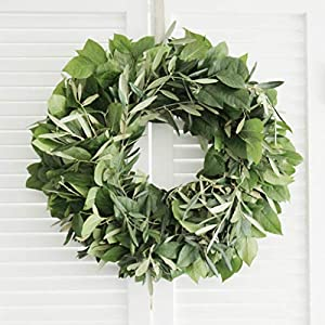 "Fresh Olive Lemon Leaf Wreath- 20"" (free shipping) 73"
