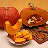 buy NIKITOVKASeeds - Pumpkin Konfetka - 40 Seeds - Organically Grown - Non GMO now, new 2019-2018 bestseller, review and Photo, best price $5.49