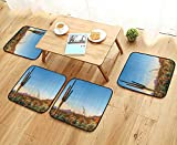 Universal Chair Cushions Sun Goes Down in Desert Prickly pear Cactus Southwest Texas Natial Park Personalized Durable W15.5 x L15.5/4PCS Set