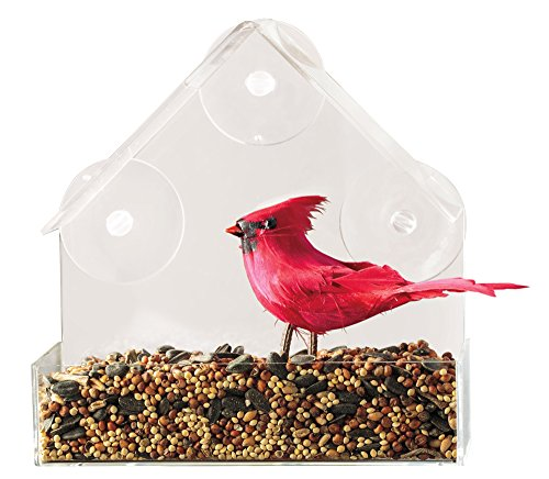 Window Bird Feeder - Virtually Squirrel Proof Birdfeeder, Clear Acrylic Suction Cup Bird House Feeder (Feeder Clear Window Bird)