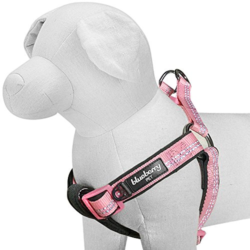 Blueberry Pet 4 Colors Soft & Comfy New 3M Reflective Step-in Pastel Color Padded Dog Harness, Chest Girth 23.5