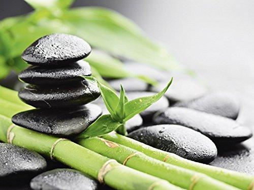 Artland Qualitätsbilder I Bild auf Leinwand Leinwandbilder Pavel Timofeer Wachstum - Lavasteine Bambus Wellness Zen Stein Fotografie Grün A6XG