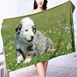 Luxury Plush Bath Towel Dog High Absorbency L63 x W31.2 INCH