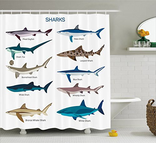 Ambesonne Sea Animal Decor Shower Curtain, Collection Types of Sharks Bronze Whaler and Piked Dogfish Fox Maritime Design, Fabric Bathroom Decor Set with Hooks, 75 Inches Long, (Fox Shower Curtain Hooks)