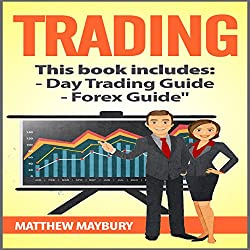A Beginner's Guide to Day Trading - A Beginner's Guide to Forex