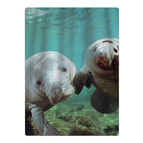My Beach Towels Pair Of Manatee Doug Perrine Ocean Animal Beach Towel by My Beach Towels