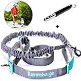 Hands Free Dog Leash with Waist Wearing - Double Handle Reflective Bungee Leash with Adjustable Waist Belt – Perfect for Running, Jogging or Walking - Ideal for Medium to Large Dogs