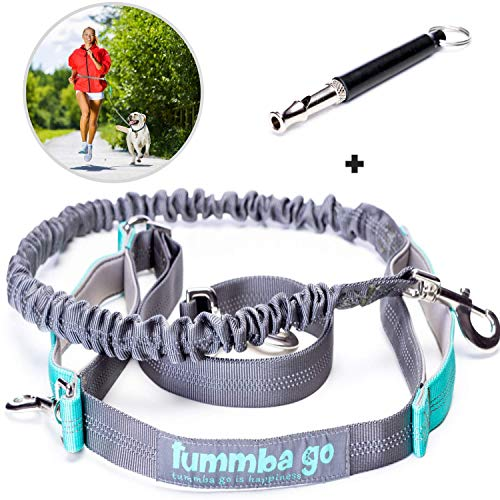 Hands Free Dog Leash with Waist Wearing - Double Handle Reflective Bungee Leash with Adjustable Waist Belt - Perfect for Running, Jogging or Walking - Ideal for Medium to Large ()