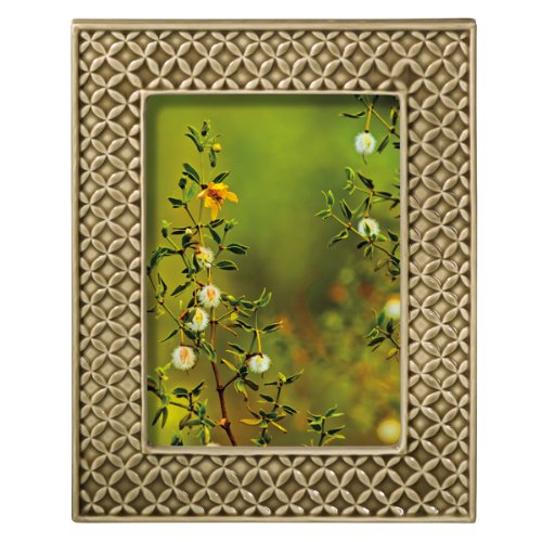 Grasslands Road Everyday Life Sterling Taupe Textile Leaf Ceramic Frame, 5 by 7-Inch by Grasslands Road