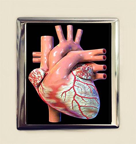 Anatomical Heart Cigarette Case Business Card ID Holder Wallet Medical Medicine Anatomy -