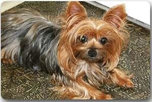 """Yorkshire Terrier Rectángulo Entryways–Felpudo antideslizante Felpudo alfombra–23,6(L) X 15,7(W), 3/16espesor de la """""""