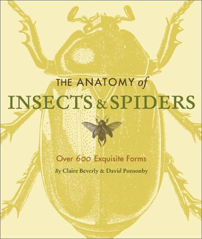 The Anatomy Of Insects Spiders Over 600 Exquisite Forms Claire