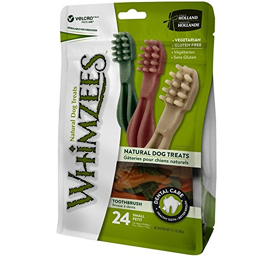 Paragon Whimzees Toothbrush Star Dental Treat for Small Dogs, 24 Per Bag
