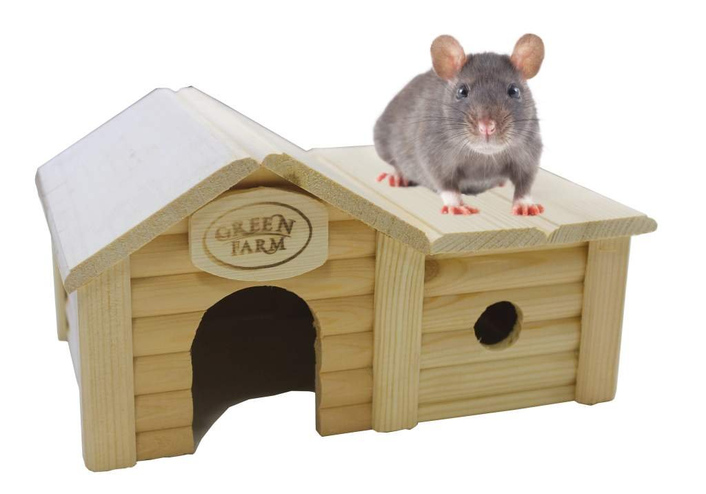Green Farm Small Animal House with Annex for Hamsters and Mice