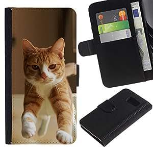 EuroCase - Samsung Galaxy S6 SM-G920 - orange cat American British shorthair - Cuero PU Delgado caso cubierta Shell Armor Funda Case Cover