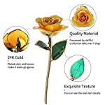 ZJchao-Yellow-Gold-Rose-Long-Stem-24k-Rose-Dipped-Rose-Flower-Best-Gift-for-Valentines-Day-Mothers-Day-Anniversary-and-Birthday-Yellow