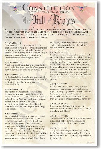 The U S  Constitution   The Bill Of Rights   Us History Government Classroom School Poster