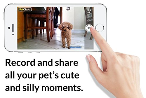 Record and share all your pet's cute and silly moments.