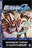 Mobile Suit Gundam Seed, Vol. 1: Divergent Strike