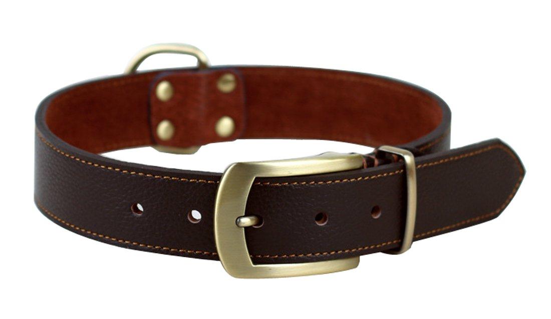formato 21 a 24,5 e 1,4 Wide cinghia di stile facile da usare headcollar medio // cani di taglia grande Rantow forte in pelle regolabile Classic Pet Dog Training Collari Nero