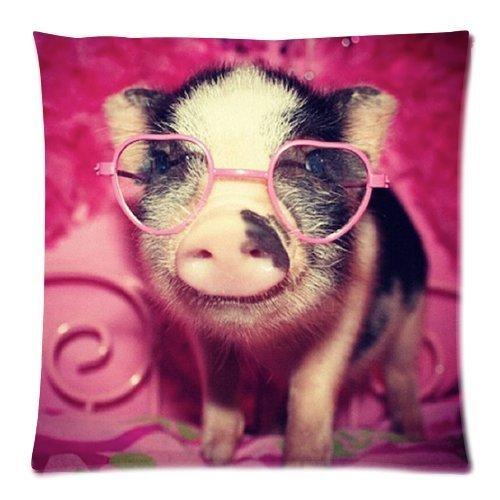 Cute Baby Pigs - 7