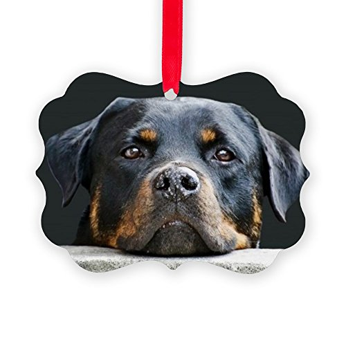 - CafePress Rottweiler Christmas Ornament, Decorative Tree Ornament