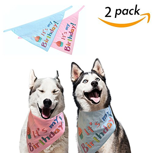51VHgc6gVZL - SCENEREAL Dog Birthday Bandana Pet Scarf 2 Pcs/Pack Triangle Bibs Accessories for Small to Large Dogs Cats Blue and Pink Set