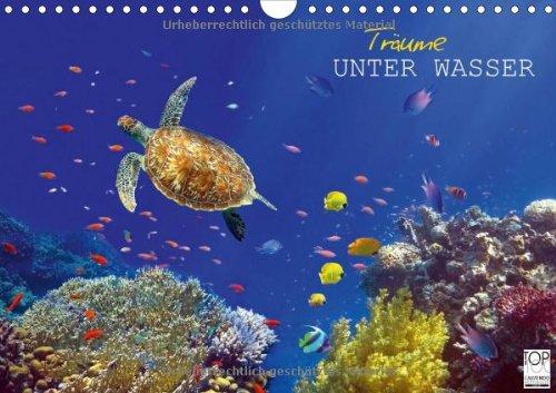 Träume unter Wasser (Wandkalender 2014 DIN A4 quer): Eindrücke aus der Unterwasserwelt (Monatskalender, 14 Seiten)