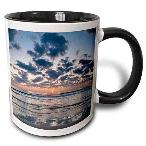 3dRose 3dRose Beach, Anastasia State Park, St. Augustine, Florida - US10 RSP0006 - Rob Sheppard - Two Tone Black Mug, 11oz (mug_89264_4), , - Florida Augustine Outlets St