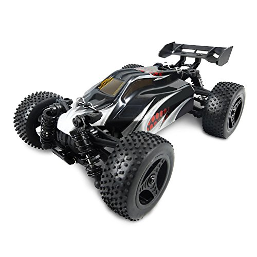 TOYENT TG030 1/24 Scale 4WD RC Car, Electric Racing Buggy(RTR) with High Speed of 28 killometer/h, 2.4GHz Radio Controlled Vehicle for Kids and Adults