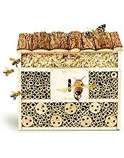 Cajas de insectos | Amazon.es