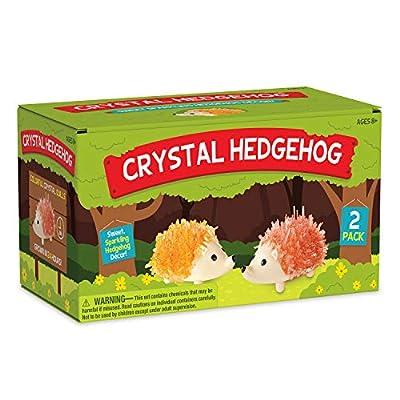 MindWare Crystal Growing Kits (Hedgehog): Toys & Games