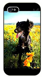 iPhone 6 Case Black dog, floral field - black plastic case / dog, animals, dogs