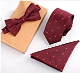 Newland Polyster Skinny Neck ties and Bowtie Pocket Square 3pcs Set for Gifts (20)