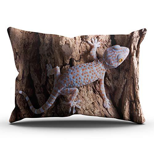 (MUKPU Tokay Gecko Home Decor Sofa Pillowcase 20X36 Inch King Throw Pillow Case Hidden Zipper Single-Sided Printed)