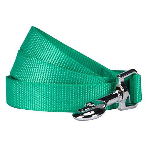 Blueberry Pet 19 Colors Durable Classic Dog Leash 5 ft x 3/4, Emerald, Medium, Basic Nylon Leashes for Dogs