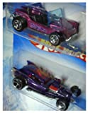 Hot Wheels Detailed Diecast Meyers Manx Dune Buggy - Fang ula Design 1/64 Scale