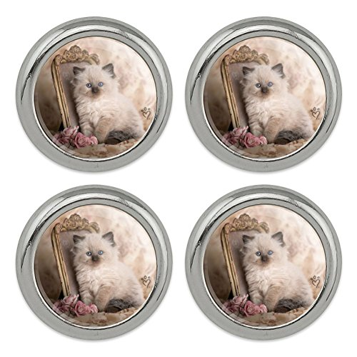 Ragdoll Tiffany Cat Kitten Victorian Roses Metal Craft Sewing Novelty Buttons - Set of 4