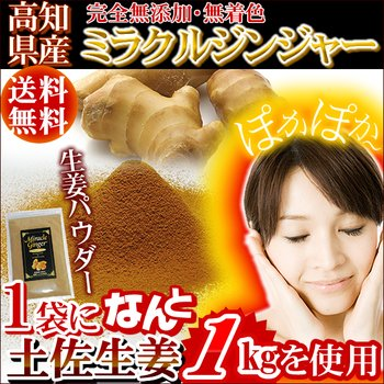 Holonic Foods ginger powder Miracle Ginger 80g Kochi production Tosa ginger 100% by Holonic Foods
