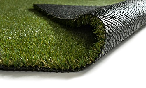- Well Woven Pet Pad Indoor/Outdoor Artificial Grass Carpet Fade Resistant Easy Care Synthetic Turf 5'3