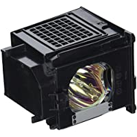 Mitsubishi 915P049A10 TV Assembly Cage with Projector bulb