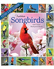 Audubon Songbirds and Other Backyard Birds Picture-A-Day Wall Calendar 2022: Your Daily Sighting of Songsters that Bring Color, Joy, and Sweet Melodies.
