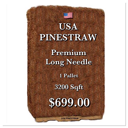 (USA Pine Straw - Pine Needle Mulch - Premium Long Needle - Covers 3200 Sqft)