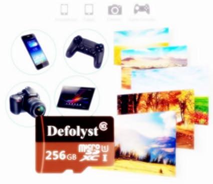 Defolyst DT79-VR - Tarjeta Micro SD de 256 GB (Clase 10, microSDXC, 256 GB, Incluye Adaptador): Amazon.es: Electrónica