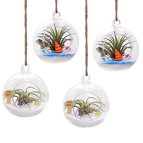 T4U 4 Inch Glass Hanging Plant Terrariums Tealight Holder - Pack of 4, Globe Air Plant Pot Container Planter for Succulent Cactus Fern, Candle Holder for Party Wedding Decor Birthday (Small Holders Tealight Hanging)