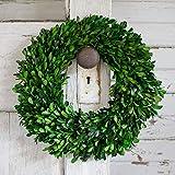 Preserved Boxwood Garden Wreath - 14 Inch