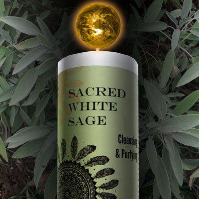 World Magic - Sacred White Sage Candle
